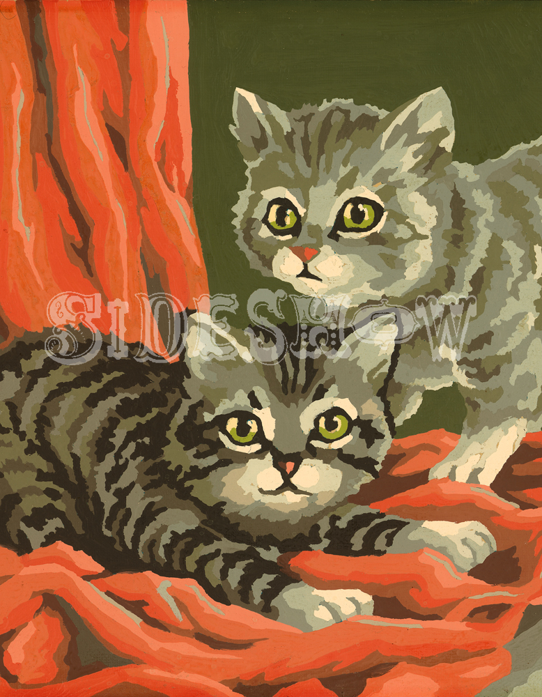 two kittens on red fabric