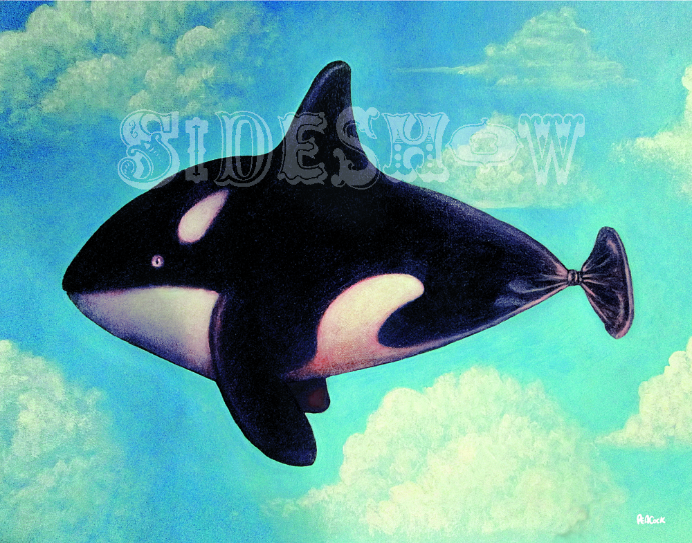 Daniel Peacock Orca Balloon