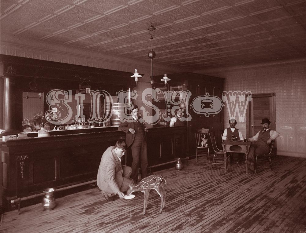 deer saloon vintage photo