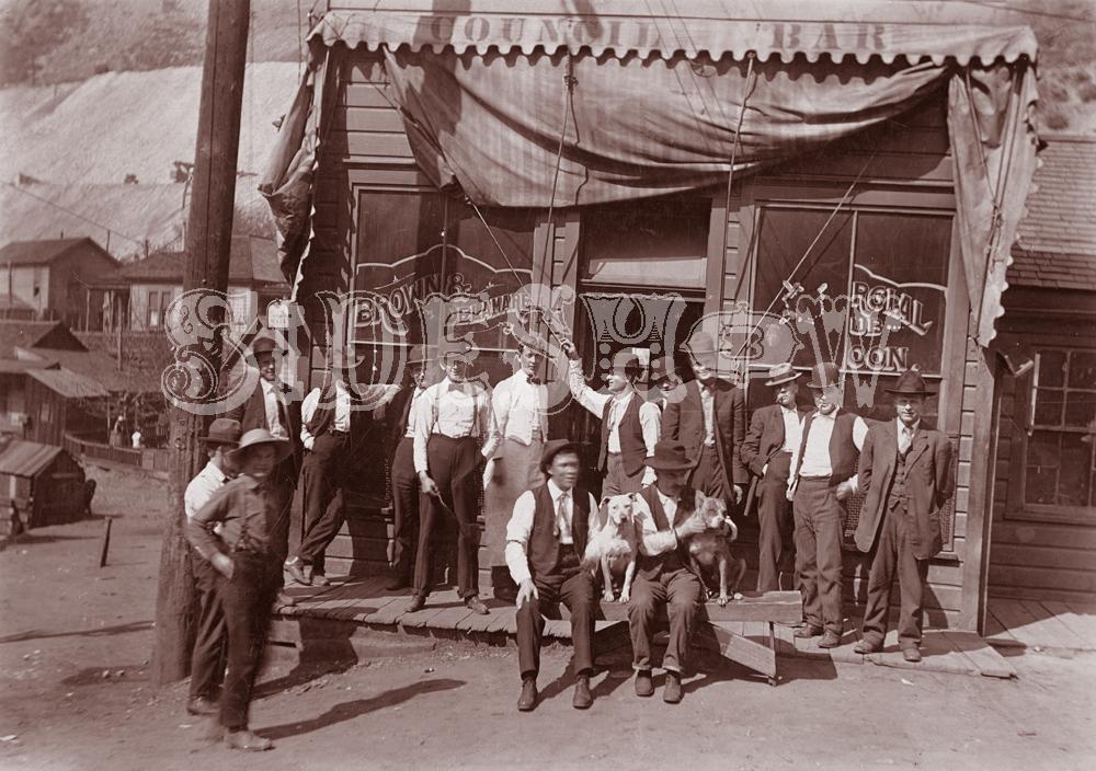 dogs saloon vintage photo