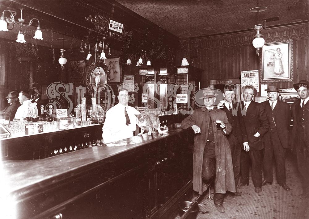 cat saloon vintage photo