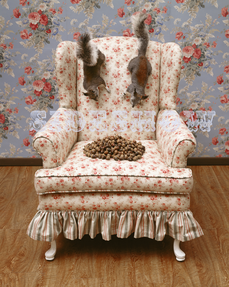 Neal Brown Squirrel's Chair